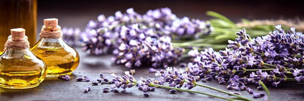 Huile essentielle lavande pour spa aromathérapie